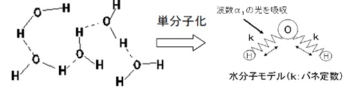 図3 水集合分子モデルおよび水分子の質量-バネモデル