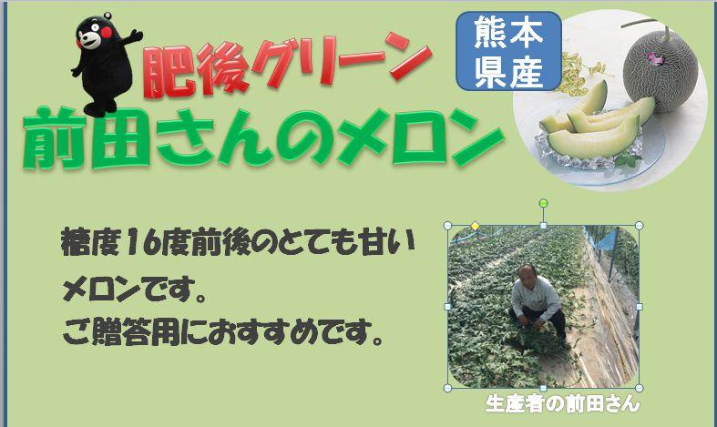 maeda_meron.JPG