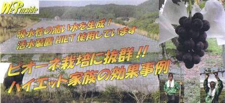 現代農業8月号清水さん